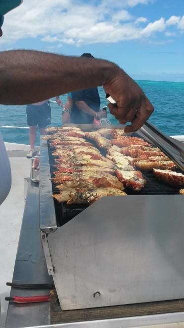 Grilled Lobster...