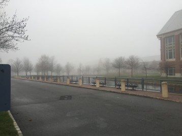 A foggy day on the compound